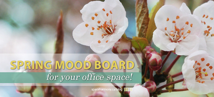 spring mood board for office space